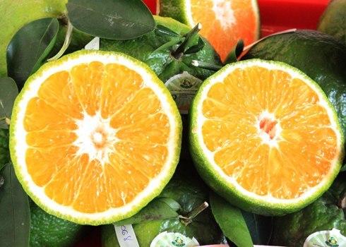 9 loại trái cây không hạt từng làm mưa làm gió cho thu lời khủng-7