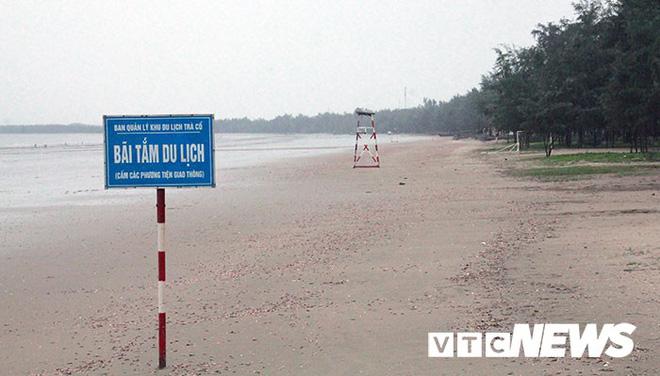 Hình ảnh mới nhất tại Quảng Ninh và Hải Phòng trước giờ bão số 3 đổ bộ-2