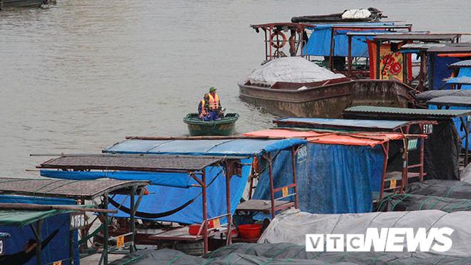 Hình ảnh mới nhất tại Quảng Ninh và Hải Phòng trước giờ bão số 3 đổ bộ-6