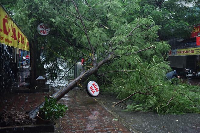 Bão số 3 suy yếu thành áp thấp nhiệt đới, Bắc Bộ tiếp tục mưa lớn-2