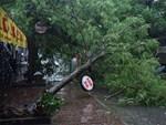 Ảnh: Người dân Hà Nội oằn mình trong mưa lớn và gió lốc mạnh, bão số 3 đã suy yếu thành áp thấp nhiệt đới-19