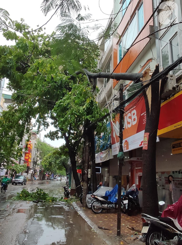 Hà Nội mưa rất to, cây cối bị gió quật ngã nằm la liệt, nhiều nơi ngập nặng sau bão Wipha-2
