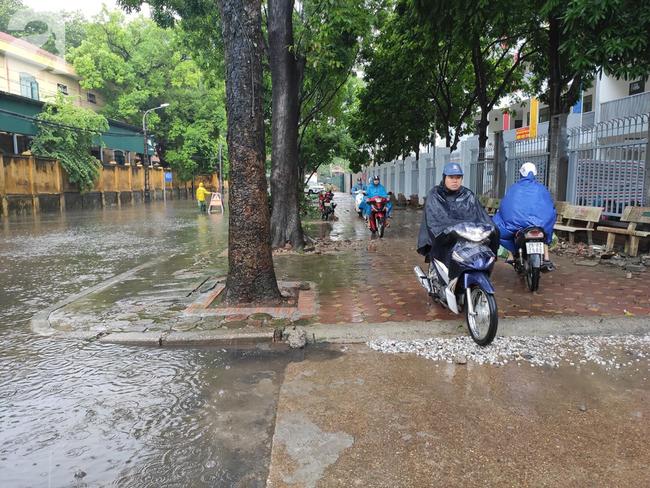 Hà Nội mưa rất to, cây cối bị gió quật ngã nằm la liệt, nhiều nơi ngập nặng sau bão Wipha-9