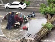 Hà Nội mưa rất to, cây cối bị gió quật ngã nằm la liệt, nhiều nơi ngập nặng sau bão Wipha