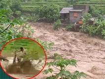 NÓNG: Lũ cuốn trôi 17 người, hiện 13 người vẫn đang mất tích ở Thanh Hoá