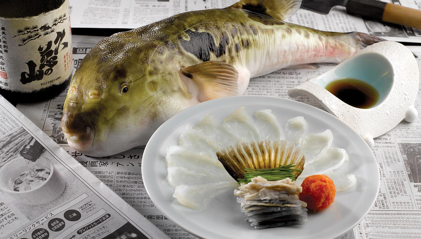 7,5 triệu đồng/100g thịt, ai mà ngờ loại cá vừa xấu xí vừa cực độc này lại đáng giá ở Nhật Bản đến thế-1