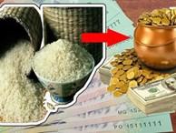 Đặt hũ gạo trúng 'điểm vàng' phong thuỷ này để tụ lộc gấp trăm- cả năm no đủ, tiền chảy về đầy túi
