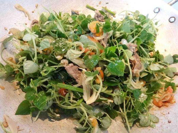 Có loại rau đắt hơn thịt, châu Âu, Trung Quốc tôn thảo dược quý chữa bệnh cực tốt, người Việt chỉ coi là cỏ dại-2