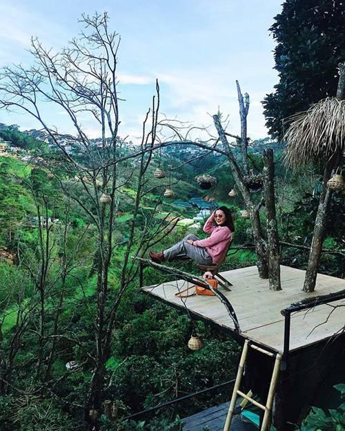 Top 3 homestay đẹp mộng mơ ở Đà Lạt cho cô nàng thích sống ảo-1