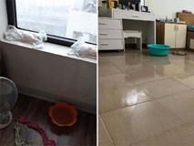 Người dân chung cư khốn khổ khi nhà bị thấm, nước mưa tràn vào phải lấy bỉm trẻ em để
