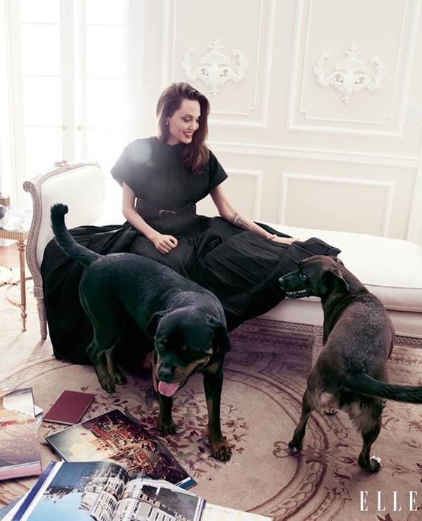 Angelina Jolie 44 tuổi đẹp rạng ngời với thần thái mê hoặc-5