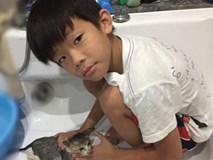 Bị bỏ quên trên xe, bé 10 tuổi Hà Nội sống sót và 9 giờ tìm đường về nhà