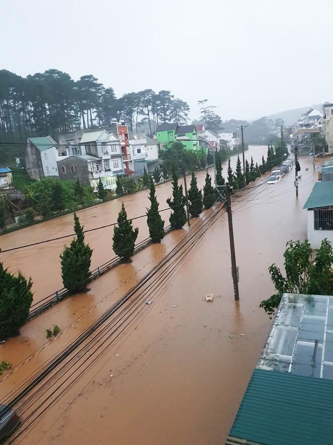 Nhiều người sốc nặng không nhận ra đây là Đà Lạt vì chìm trong biển nước, lật đật bỏ ngay tour du lịch vào cuối tuần này-5