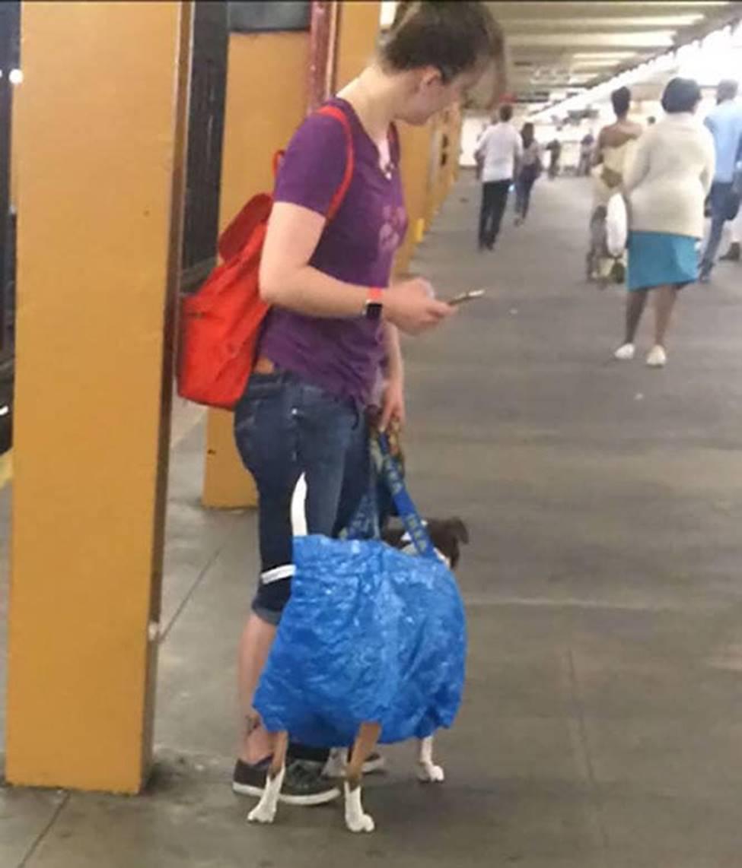 Bắt gặp hình ảnh quái gở chỉ có ở trên tàu điện ngầm-3