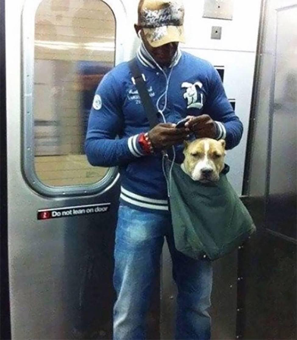 Bắt gặp hình ảnh quái gở chỉ có ở trên tàu điện ngầm-10