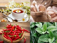 'Thần dược' chống ung thư rẻ bèo có mặt hàng ngày trong bữa ăn của người Việt