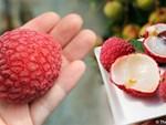 Nho đắt nhất thế giới về Việt Nam giá 6,5 triệu đồng/chùm, cửa hàng có bán lẻ từng trái-3