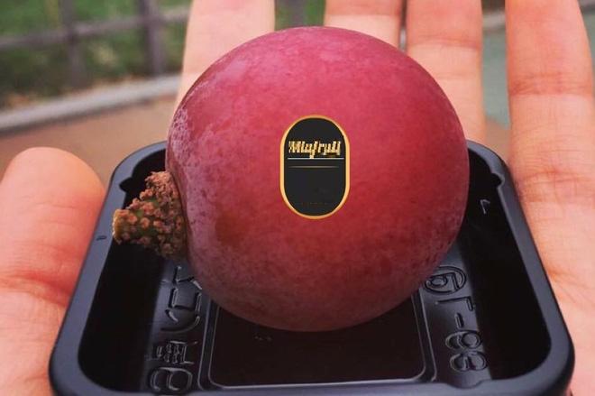 Nho đắt nhất thế giới về Việt Nam giá 6,5 triệu đồng/chùm, cửa hàng có bán lẻ từng trái-2