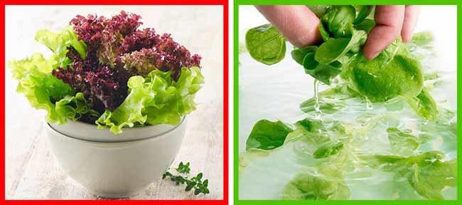 8 loại thực phẩm quen thuộc bạn vẫn rửa sai cách mà chẳng hay biết-5