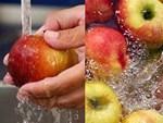 4 mẹo nhỏ giúp bảo quản thực phẩm tươi lâu gấp đôi thời gian-5