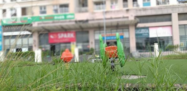 Cận cảnh bẫy rắn hổ mang chúa dài hàng mét, từng tấn công người đi đường tại khu đô thị Hà Nội-3