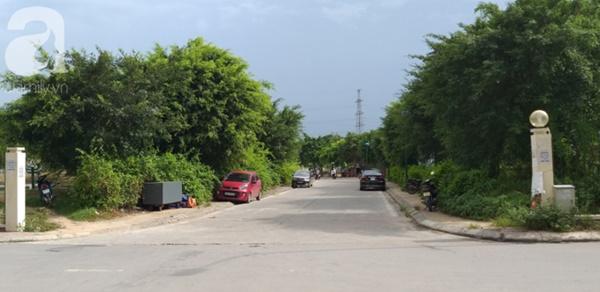 Cận cảnh bẫy rắn hổ mang chúa dài hàng mét, từng tấn công người đi đường tại khu đô thị Hà Nội-8