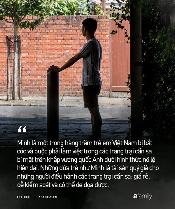 Cuộc đời nô lệ của cậu bé người Việt bị bán sang Anh trồng cần sa: Bị bắt cóc, tấn công tình dục và những sang chấn tâm lý kinh hoàng-1