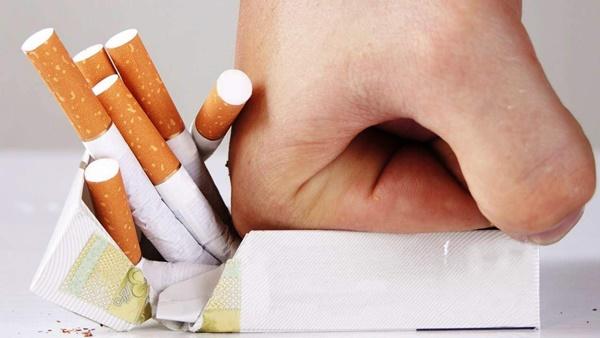 """Loại cỏ siêu quyền lực"""" mọc hoang ở Việt Nam: Giúp cai nghiện thuốc lá, ức chế tế bào ung thư và nhiều bệnh khác-2"""