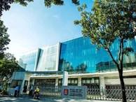 Hàng loạt trường ở TPHCM tự gắn mác 'Quốc tế', thu học phí khủng tận 380 triệu đồng/năm