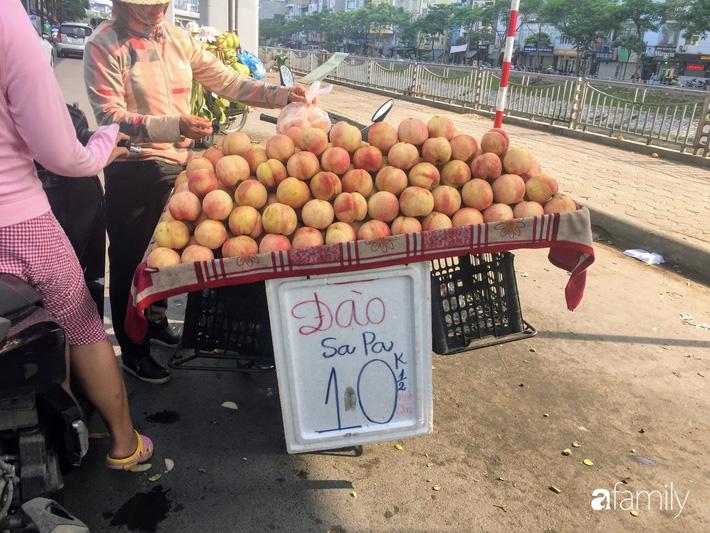 Đào Sapa to mọng giá 20.000 đồng/1 kg bán đầy đường nhưng nguồn gốc xuất xứ còn bỏ ngỏ-2