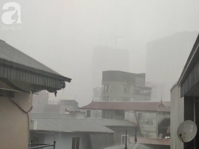 Bão số 4 đang di chuyển vào đất liền, Hà Nội mưa gió khủng khiếp, đã có 1 người chết do cây xanh đè trúng-11