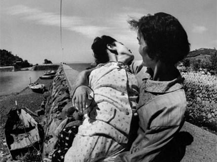 Thảm họa thủy ngân Minamata: 27 tấn chất thải hóa học đổ ra biển và nỗi đau đớn kéo dài qua hơn nửa thế kỷ