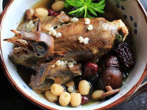 Bé bằng chén cơm nhưng loài vật này bổ gấp 9 lần thịt gà, Trung Quốc tôn thuốc bổ thượng phẩm