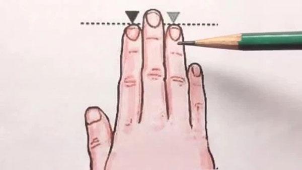 So sánh độ dài của ngón trỏ và ngón đeo nhẫn trên bàn tay phụ nữ sẽ biết được cuộc sống tương lai sướng khổ thế nào-1