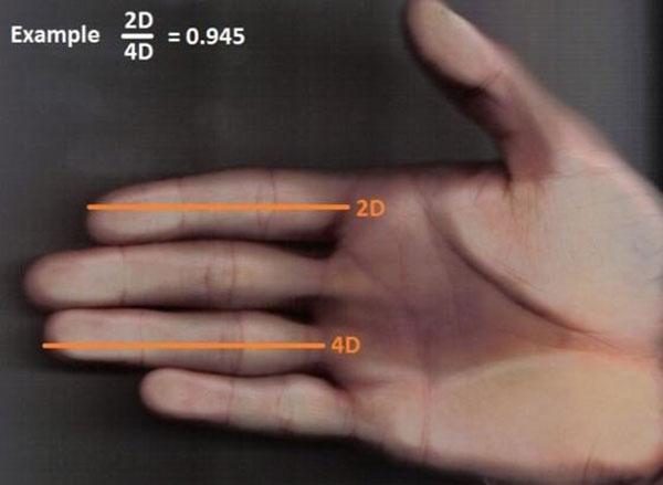 So sánh độ dài của ngón trỏ và ngón đeo nhẫn trên bàn tay phụ nữ sẽ biết được cuộc sống tương lai sướng khổ thế nào-3