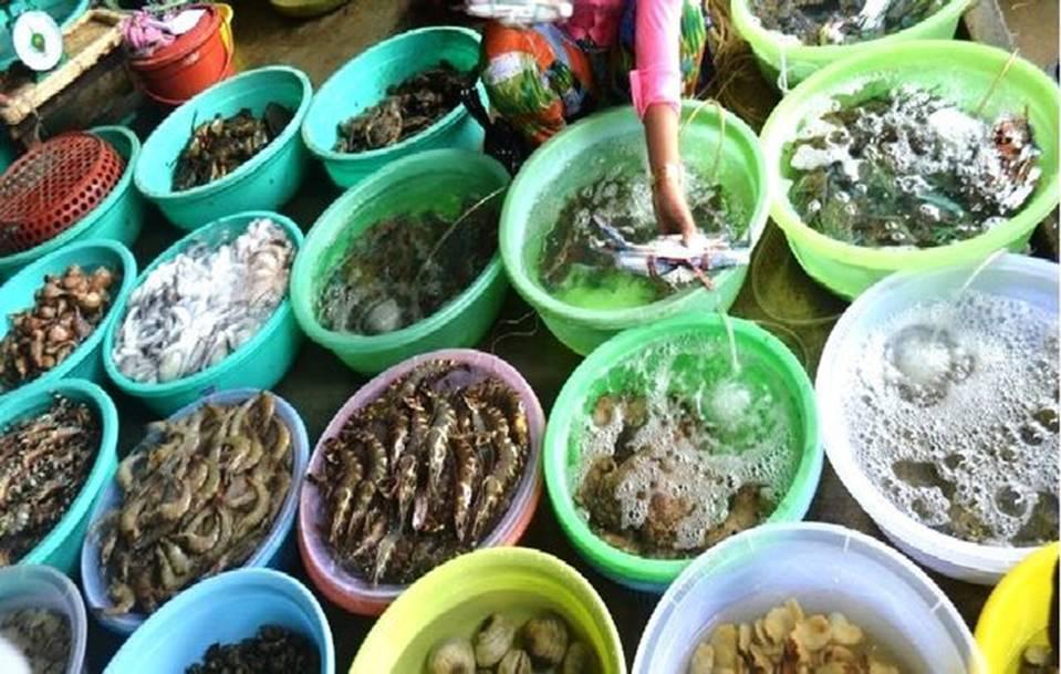 Dân buôn hải sản hốt bạc dịp lễ 2/9, nhiều điểm bán bỏ túi hàng trăm triệu-2