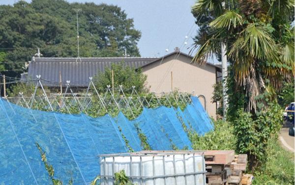 Một người Việt 21 tuổi bị bắt giữ vì đâm hai vợ chồng cụ già khiến một người tử vong ở Nhật Bản-2