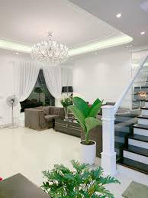 Quang Hà làm gì để có tài sản khủng: 13 căn nhà, biệt thự 20 tỷ, lại sắp xây chung cư 10 tầng-10