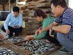 Trung Quốc không mua: Dưa hấu, thanh long rớt thảm, dân thua lỗ-2