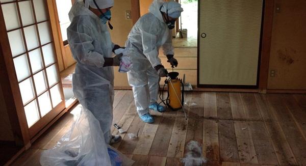 Nhật Bản: Dọn dẹp nhà cửa cho những xác chết cô độc với lương tháng trăm triệu nhưng không mấy ai dám làm-3