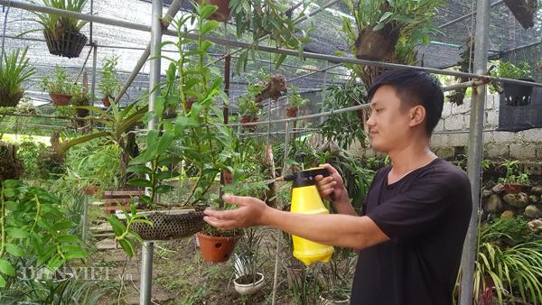 8X Lạng Sơn mê phong lan rừng: Kiếm trăm triệu từ 1 câu nhỡ mồm-4
