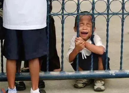 Mặc cả Học đúng 2 phút rồi về: Những tình huống cười ra nước mắt trong ngày đầu con đến trường-6