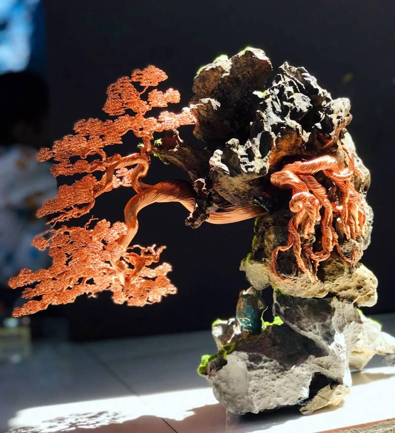 Hot boy An Giang hô biến sợi dây đồng thành cây bonsai dáng lạ-5