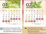 Chính phủ thông qua lịch nghỉ Tết Canh Tý 2020-2