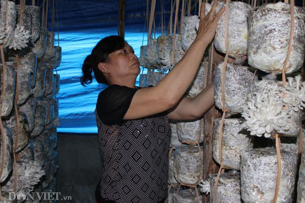 Xắn tay áo lao vào trồng nấm mọc tua tủa, thu 30 triệu/tháng-4