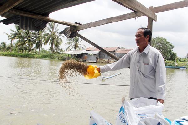 Chuyện Tám Đậu, còng lưng nuôi 2.000 tấn cá/năm rồi ôm tiền tỷ đi từ thiện-2