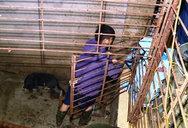 Cận cảnh căn hầm bí mật trong đường dây trộm hơn 100 tấn chó chấn động xứ Thanh-2