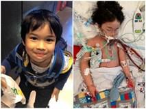 Bé 4 tuổi suýt chết vì nhiễm trùng máu do vi khuẩn
