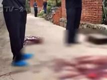 Vợ cũ không chịu quay lại, gã trai rình rập giết hại mẹ vợ, 8 năm sau giết bố vợ