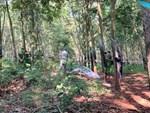 Nóng: Bắt giữ hung thủ nghi sát hại, hiếp dâm thiếu nữ 16 tuổi ở rừng cao su-3